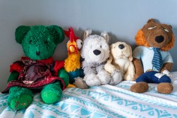 Mini Stuffed Animal Collection
